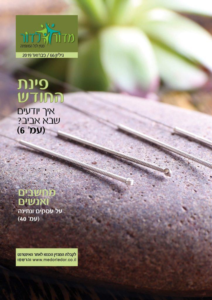 מגזין 66