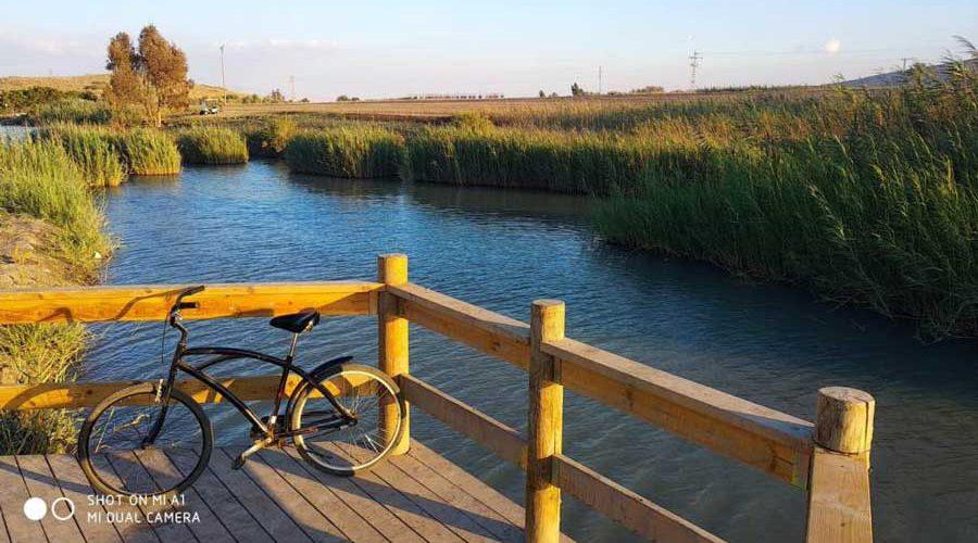 אופניים שעונות על מעקה ליד אגם