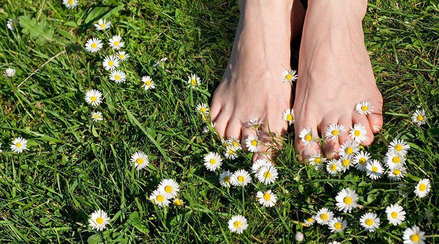 כפות רגליים על דשא
