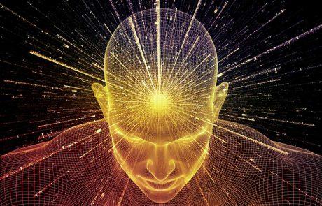טיפוח הוא לא עניין של פעולה זה עניין של תודעה