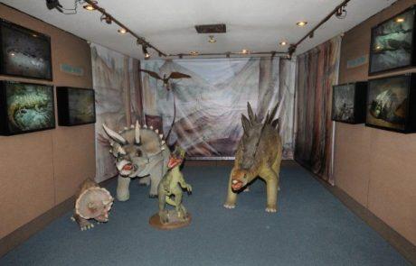 מוזיאון האדם והחי נפתח