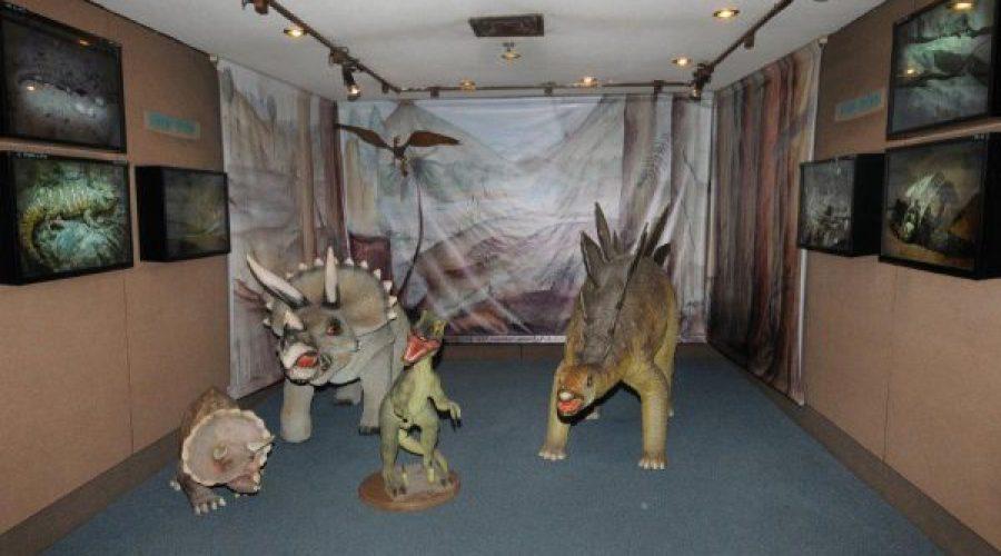 דינוזאורים במוזיאון האדם והחי תמונה קלה צלם יקי אקרמן (11)