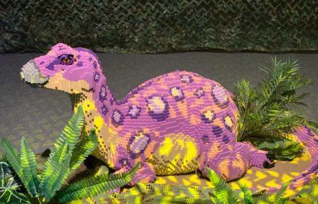 """לראשונה בישראל! מוזיאון הלגו המצליח בעולם מגיע לאילת עם """"ממלכת הדינוזאורים"""""""