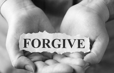 נפלאות הסליחה