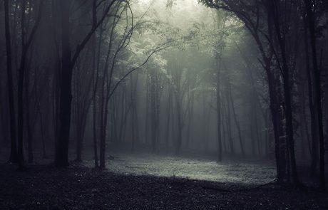 מעט מן האור דוחה הרבה מן החושך.