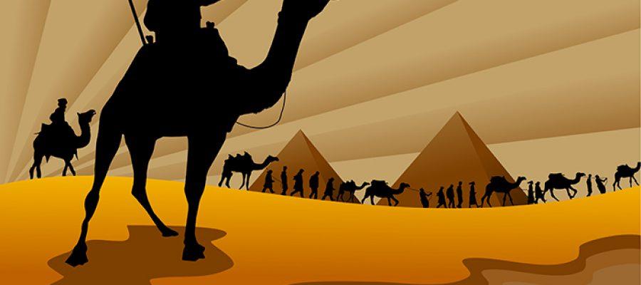 גמל ורוכב במדבר