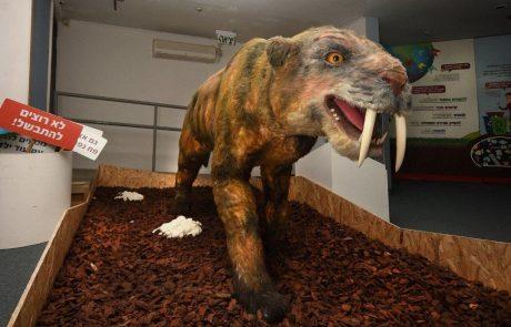 """תערוכה חדשה במוזיאון האדם והחי בפארק הלאומי ר""""ג – בחזרה לעידן הקרח"""
