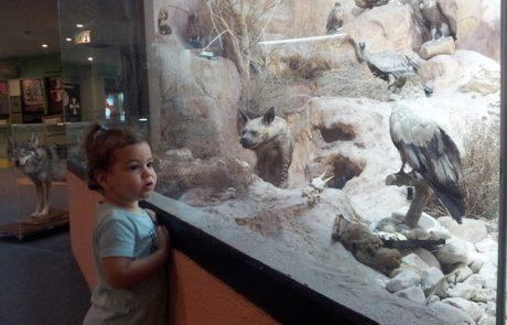 """חוגגים את חג האביב במוזיאון האדם והחי בפארק הלאומי ר""""ג"""