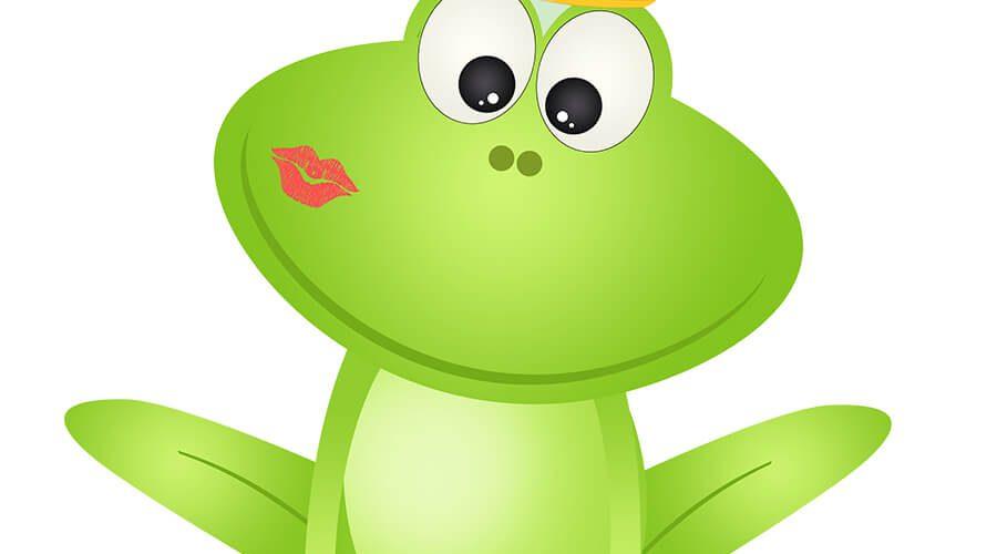 צפרדע רויטל רומיאו