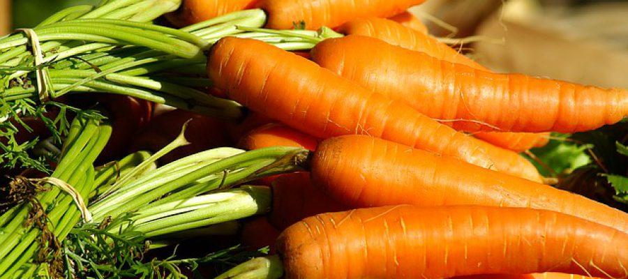 vegetables-1067269_640